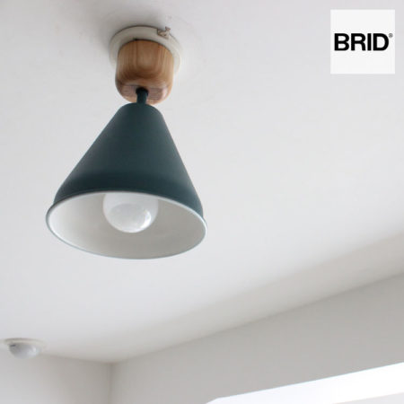 COLOR & WOOD 1BULB CEILING LIGHT